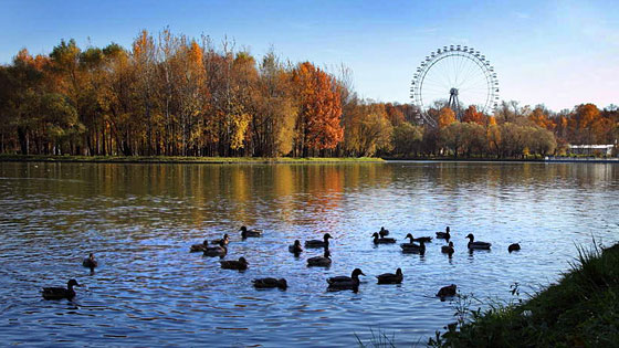 Романтические свидания в Санкт-Петербурге 2-9
