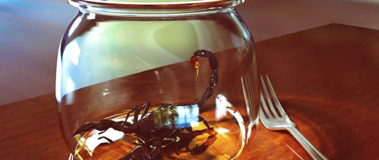 Мужчина скорпион изменяет: особенности знака